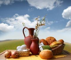 Информирование о необходимости сбалансированного питания - одна из задач Всемирного дня здоровья