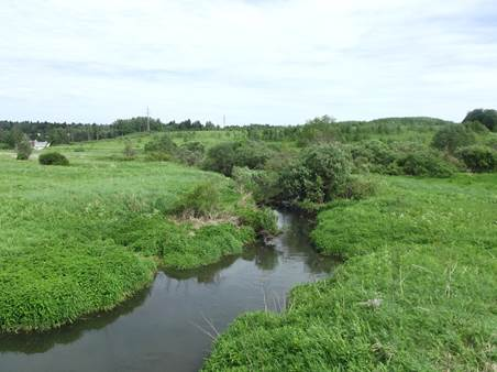 Река Пажа перед Радонежем. Современное фото
