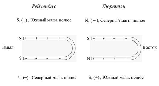 Рис. 6. Согласованность правой и левой сторон тела с магнитным полем Земли для положения сна – лёжа на спине, голова в направлении на восток
