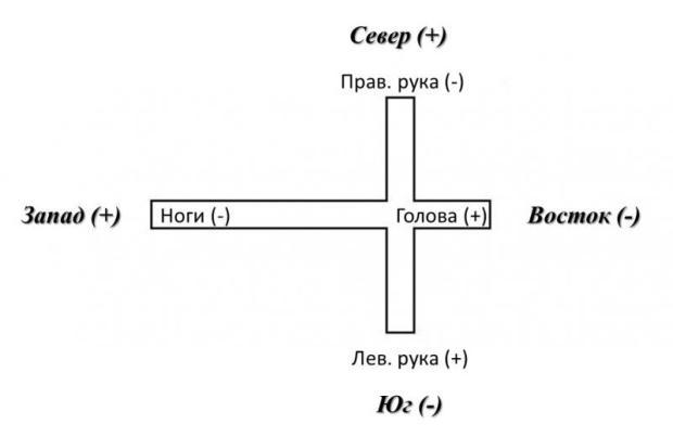 Рис. 5. Положение человека – лёжа на спине, голова в направлении на восток