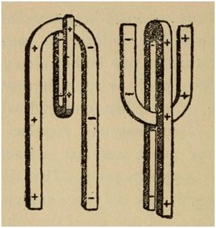 Рис. 3. Полярность тела человека, как два подковообразных магнита