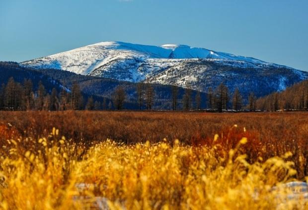 Священная гора Бурхан-Халдун. Монголия