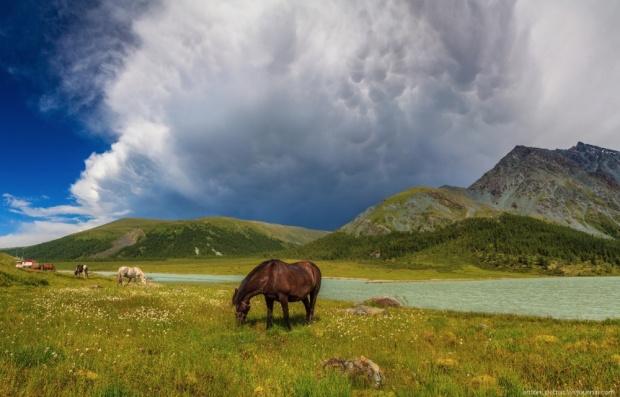 © Антон Петрус После шторма